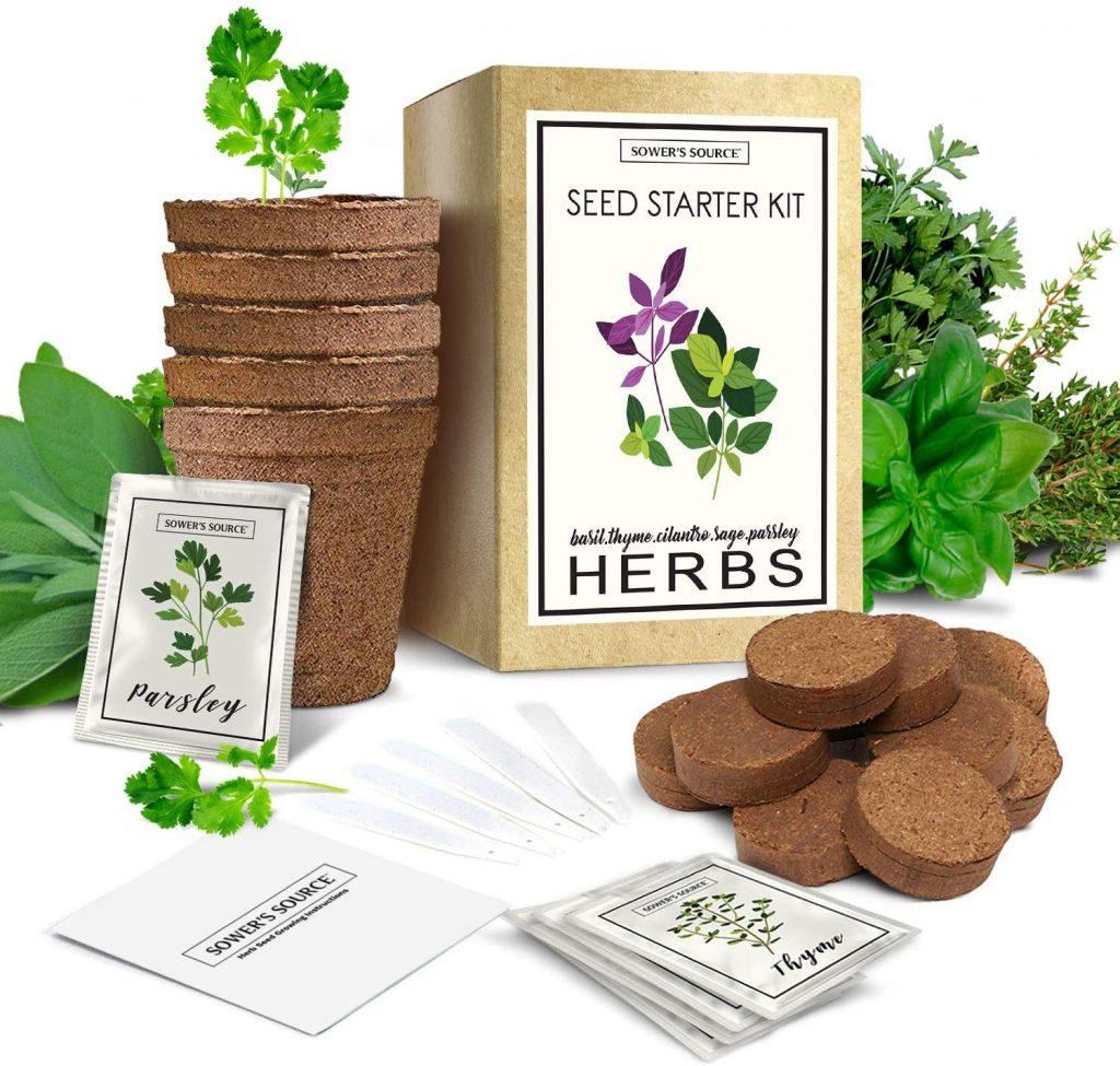 Indoor-Herb-Starter